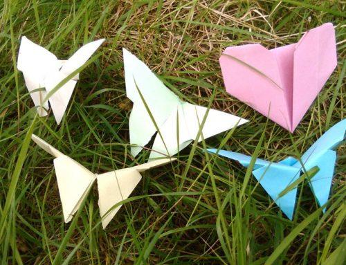 Wings of Peace 2020